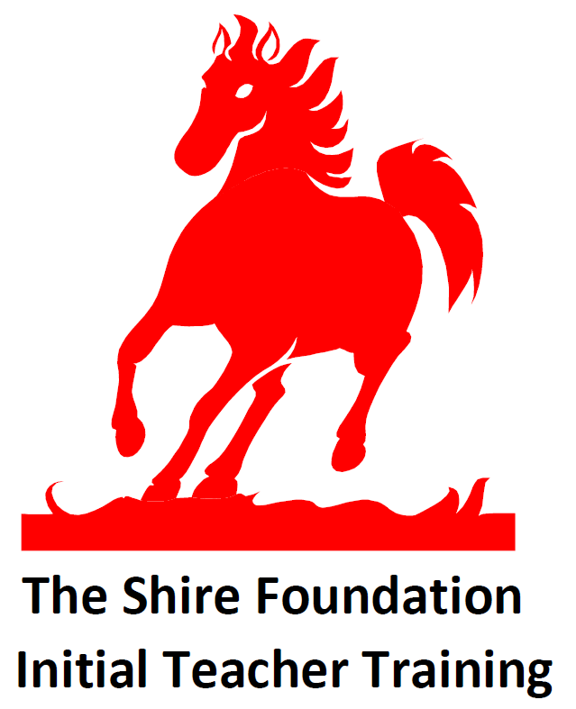 Shire foundation logo